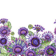 Beautiful purple African daizy flowers with exotic leaves on white background. Seamless floral pattern. Hand painted watecolor illustration.