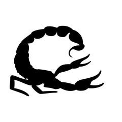 Scorpio vector illustration, black silhouette ,profile