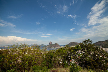 Panoramic view of the sugarloaf mountain in Rio de Janeiro seen trough greenery from a high vantage point with the city and port in the foreground on a bright day with blue sky