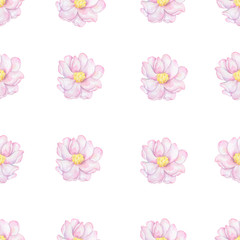 This Modern Pink and Purple Floral Pattern Features a Repeating Flower Background Design with Pastel on white background