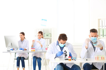 Scientists working in laboratory. Research and analysis