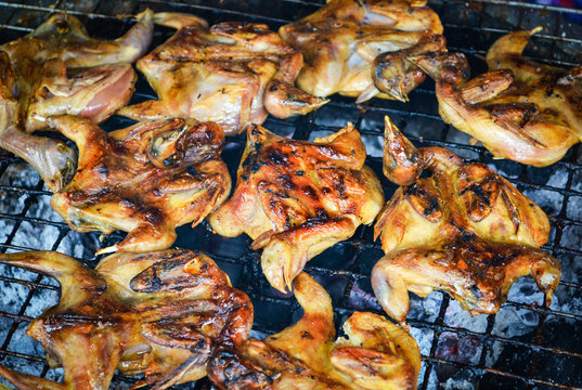 Grilled quail on the grill grate / marinated of roasted quail bird for cooked food