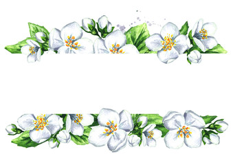 White jasmine template. Watercolor hand drawn illustration  isolated on white background