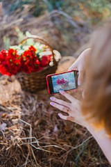 Girl takes pictures of basket with red flowers in sunlight on smartphone.