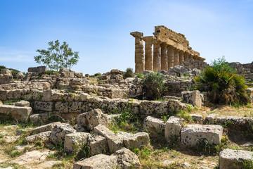 Ruins of Greek Acropolis of Selinunte near the Temple of Apollo (Temple C), Castelvetrano, Trapani Province, Sicily, Italy
