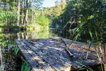 Start to Adventure Cruise Trip / Selfmade raft built by old oil barrels and wooden planks, swimming on a small tranquil lake hidden in forest for leisure activity adventure