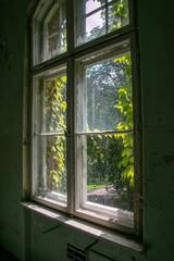 Foto auf Acrylglas Altes Beelitz-Krankenhaus Ruins of Beelitz-Heilstätten Lost place Berlin Brandenburg;