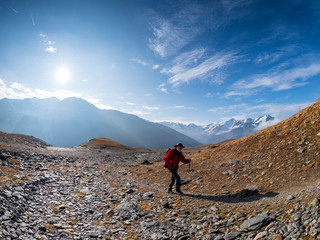 Italy, Trentino, Monte Cevedale, Punta San Matteo, Forno glacier, hiker