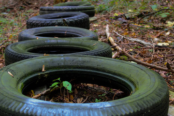 dumped tires in an Forest in Austria