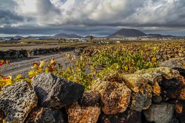Lanzarote Landschaft