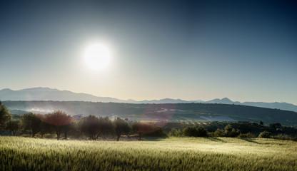 Mountains and field under bright sun Crete Greece Europe