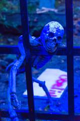 Skelett mit Totenkopf hängt an einem Metallgitter zu Halloween