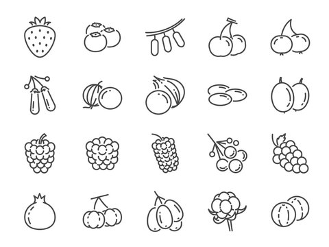 Wild berry line icon set. Included the icons as blueberry, cranberry, raspberry, strawberry, cherry and more.