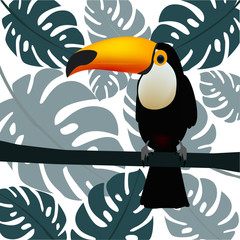 Toucan, exotic birds, palm leaves, jungle leaves, bird of paradise