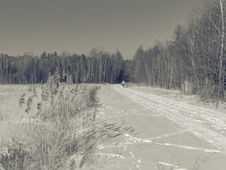 a woman alone on a snowy forest road