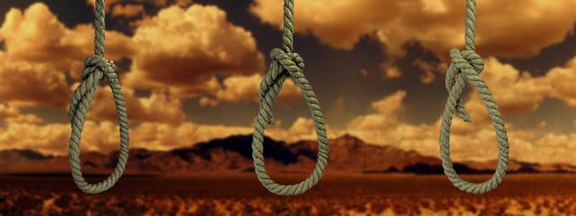 hanged noose