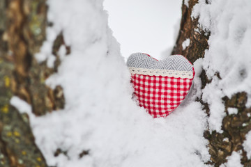 Beautiful Heart on the Branch on Natural Backgrounds Concept of Valentine's day Retro Vintage