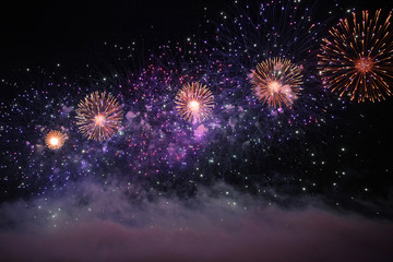 Fireworks in the sky with unusual sparks in the form of flowers