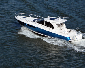 Blue and White High-End Cabin Cruise