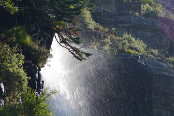 Waterfalls in early morning light in Glacier Narional Park.