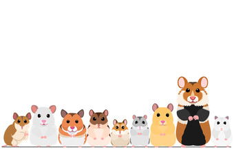 hamsters in a row