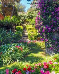 Printed roller blinds Garden Garden on The Island of Capri