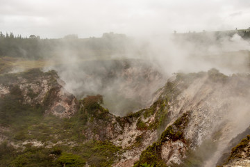 Primordial landscape of New Zealand, steam rising from ground