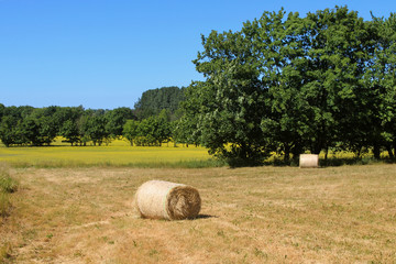 Countryside of the island Ruegen. Hay bales and panoramic view
