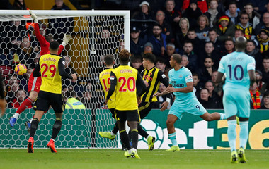 Premier League - Watford v Newcastle United