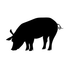 Vector pig silhouette side retro vintage template. Pig farm.