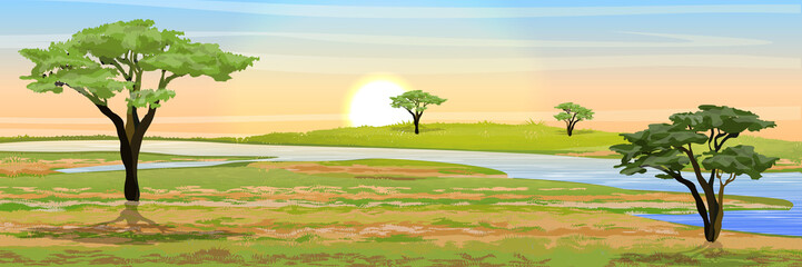 African savannah. Grass, acacia trees and river. Realistic vector landscape. The nature of Africa. Reserves and national parks.