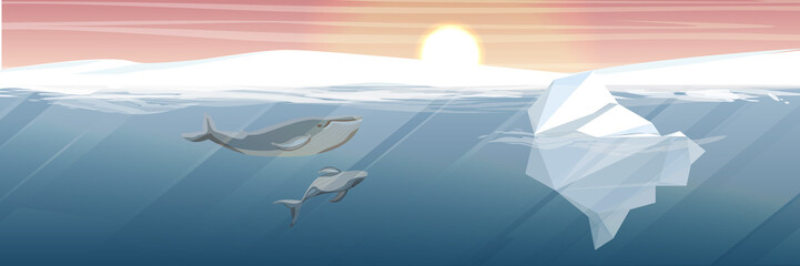 Northern underwater landscape. Iceberg and two large whale. Mom a whale and her baby whale. Vector illustration, a scene from marine life.