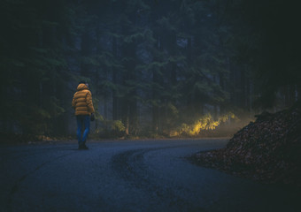 Walking man in the misty dark forest