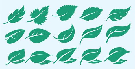 green leaf icons set, symbol, logo