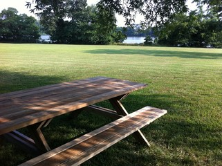 Picnic Table in the Yard