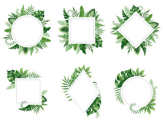 Exotic leaf frame. Spring leaves card, tropical tree frames and vintage floral jungle border isolated vector set