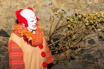 Halloween Grusel-Clown