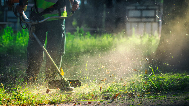 The gardener mows weeds. small parts of vegetation scatter in different directions