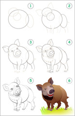 Page shows how to learn step by step to draw a cute wild boar. Back to school. Developing children skills for drawing and coloring. Vector cartoon image.