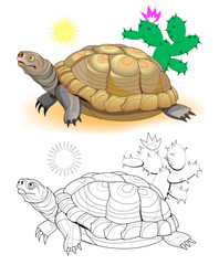 Colorful and black and white page for coloring book. Hand-drawn illustration of funny turtle in African desert. Worksheet for children and adults. Vector cartoon image.