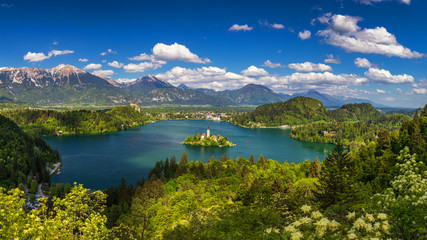 Lake Bled with St. Marys Church of Assumption on small island. Bled, Slovenia, Europe. The Church of the Assumption, Bled, Slovenia. The Lake Bled and Santa Maria Church near Bled, Slovenia. Wall mural