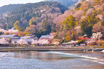 京都、春の桜咲く嵐山