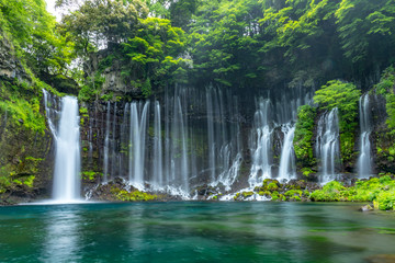 Shizuoka Shiraito Falls in Fujinomiyashi, Shizuoka Prefecture, Japan. Wall mural