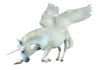 Cutouts of kneeling horses, transformed into mythical creatures and unicorns in Photoshop.