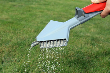 lawn fertilizer being spread by a hand held spreader machine to feed and protect grass