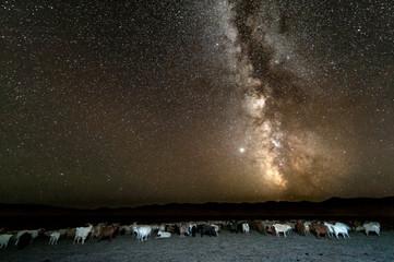 Der Sternenhimmel mit Milchstraße über der Wüste Gobi in der Mongolei