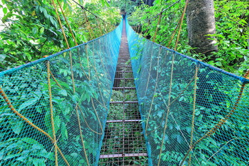 Hanging bridge on the El Nido Canopy Walk-Via Ferrata. Palawan-Philippines-0910