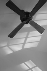 Black and White Fan with Window Reflection