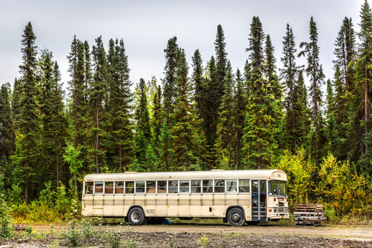 Alaska, USA - Sept 10th 2017 - An abandoned school bus near by a pine tree forest in a cloudy day