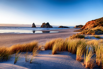 Explore the wild and rugged northern most point of the South Island, New Zealand. Wharariki Beach is a beautiful tourist attraction and destination. The image is peaceful, breathtaking and amazing. Wall mural